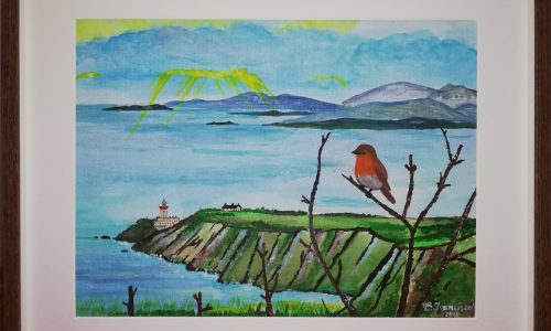 Robin in Howth