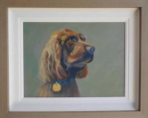Cocker Spaniel animal painting for sale by Irish artist Dorothy Moorhead