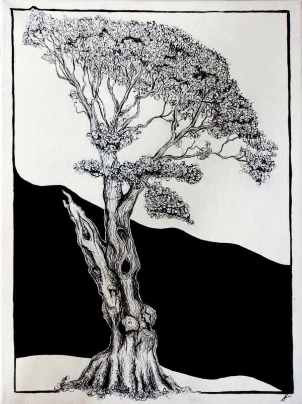 Belleek Tree Ink and acrylic drawing of a belleek tree by Irish artist Grace Tolan.