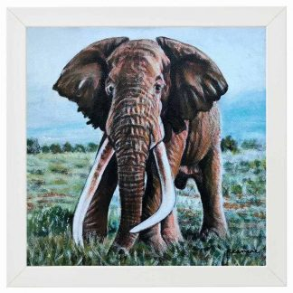 Out of Africa Oil Paintings of animals native to Africa by artist Rosemarie Kamana.