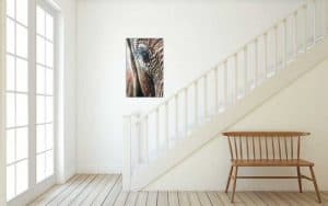 Out of Africa Oil Paintings of animals native to Africa by artist Rosemary Kamana