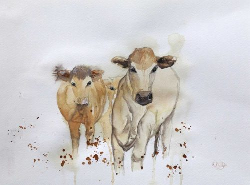 Cows Original watercolour animal painting by artist Rine Philbin