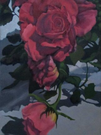 Terry's Roses 1