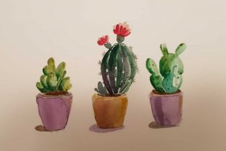 painting of Cacti for sale in online gallery by artist Leila Keshavarz. Online gallery selling original art on behalf of Irish artists