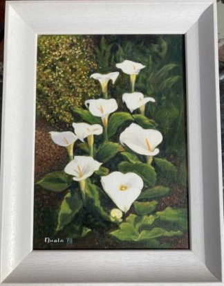Original floral painting for sale in online gallery. Brighten up your home with a painting of lilies or gift to someone special