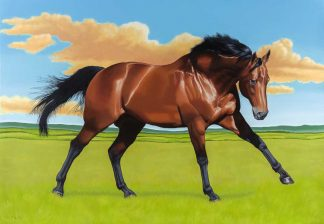 Original equine painting for sale in online gallery. Art by Irish artist. Exceptional quality art for the home
